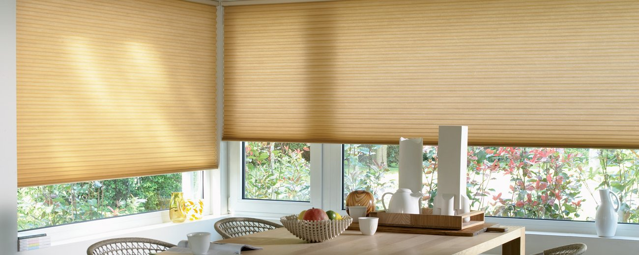 Duette Blinds Surrey .